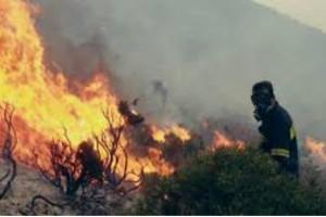 Φωτιά σε κέντρο Τύπου στο Κορωπί!