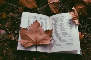4+1 υπέροχα βιβλία για φέτος το χειμώνα!