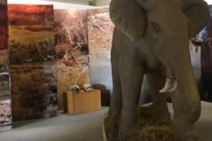 Θεσσαλονίκη: Άνοιξε το Mουσείο Φυσικής Ιστορίας στο λιμάνι!