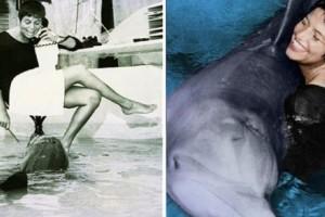 Η ιστορία της γυναίκας που «αμάρτησε» με ένα δελφίνι και αυτό αυτοκτόνησε…