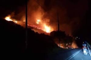 Πυρκαγιά στο Πόρτο Ράφτη: Κινδύνευσαν σπίτια, απομακρύνθηκαν κάτοικοι! Συνελήφθη ύποπτος