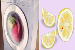 Βάζει λεμόνι στη θήκη του πλυντηρίου ρούχων! Αυτό που συμβαίνει δεν θα το πιστεύετε