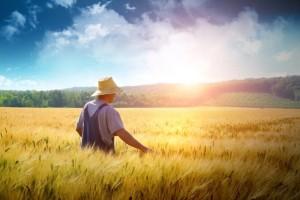Ο άτυχος αγρότης και η περιουσία... το ανέκδοτο της ημέρας (14/11)!