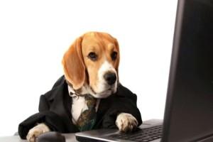 Ο σκύλος με τις κίτρινες κάρτες... το ανέκδοτο της ημέρας (13/11)!