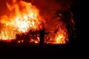 Φωτιά μαίνεται στον Μαραθώνα!