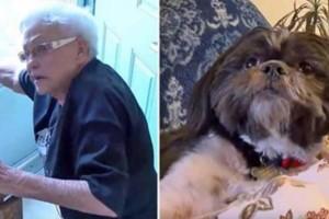 Μια γιαγιά έπεσε κάτω και δεν είχε κανέναν να την βοηθήσει... τότε το σκυλάκι της έκανε κάτι που θα σας ανατριχιάσει!