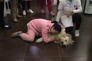 Σκυλίτσα έφαγε φόλες και πέθανε... Λίγο μετά η ιδιοκτήτρια κάνει κάτι απίστευτο!