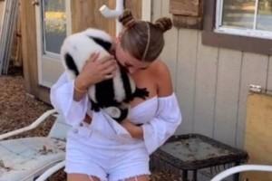 """Ένας """"γυναικάς"""".. λεμούριος εισβάλλει στο στήθος μοντέλου του Playboy! (Video)"""