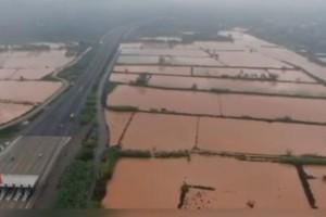 """Καταστροφικές πλημμύρες """"έπνιξαν"""" τον κάμπο της Μεσσηνίας! (Video)"""