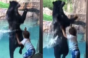 5χρονος πηδάει στον αέρα μαζί με μια αρκούδα! Λίγα δευτερόλεπτα αργότερα... (Video)
