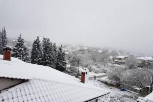 Η φωτογραφία της ημέρας: Χιόνισε στα λευκά της Θεσσαλονίκης!