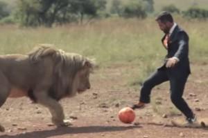 Τύπος παίρνει μια μπάλα και πάει μπροστά από ένα λιοντάρι! Λίγο μετά συμβαίνει κάτι απίθανο!