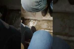 Θεσσαλονίκη: Βίντεο σοκ από λεωφορείο που πλημμυρίζει λόγω κακοκαιρίας!
