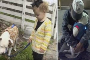 Αυτός ο άστεγος είχε μόνο τον σκύλο του  και έμαθε ότι σε 2 μήνες θα πεθάνει - Αν δείτε ποια ήταν η τελευταία του επιθυμία θα δακρύσετε!