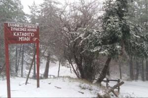 Η φωτογραφία της ημέρας: Στα λευκά και η Πάρνηθα!