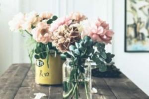 Έριξε στοματικό διάλυμα στο βάζο με τα λουλούδια! Το αποτέλεσμα θα σας αφήσει με το στόμα ανοιχτό!