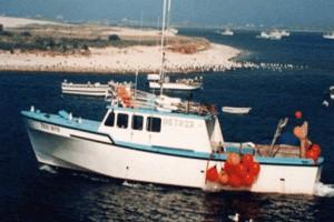 Τρεις φίλοι αποφάσισαν να πάνε για ψάρεμα: Το ανέκδοτο της ημέρας (21/01)!