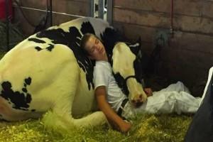 Ένας πατέρας έβγαλε φωτογραφία τον 15χρονο γιο του με μια αγελάδα...Ο λόγος; Θα σας σοκάρει!
