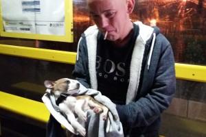 Ραγίζει καρδιές αυτός ο άντρας που κλαίει για το νεκρό κουτάβι του που οι κτηνίατροι αρνήθηκαν να θεραπεύσουν επειδή δεν είχε αρκετά χρήματα να τους πληρώσει