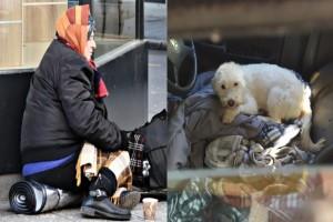 Συγκινεί η 55χρονη γυναίκα που μένει μέσα στο αυτοκίνητο της με τα δύο σκυλιά της εδώ και 33 μήνες!