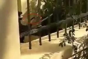 """ΓΑΔΑ για τον αστυνομικό που τράβηξε όπλο στην ΑΣΟΕΕ: """" Προέταξε το υπηρεσιακό του όπλο για εκφοβισμό, χωρίς να χρήση"""""""