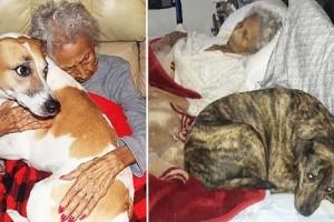 """Αυτή η γιαγιά ζήτησε κάτι συγκινητικό σαν τελευταία επιθυμία λίγο πριν πεθάνει...Θα """"ανατριχιάσετε""""!"""