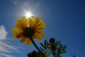 Καιρός: Αλλάζει και πάλι ο καιρός! Ποιες περιοχές θα έχουν ''μίνι'' καλοκαίρι;