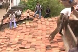 Μια πεινασμένη λεοπάρδαλη πετάχτηκε στην στέγη ενός σπιτιού! Αυτό που ακολούθησε είναι τρομακτικό...