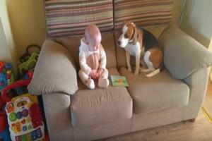 """Ο σκύλος έκατσε δίπλα στο νεογέννητο μωρό - Αυτό που έγινε στην συνέχεια θα σας κάνει να """"λιώσετε""""!"""