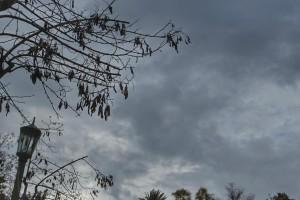 Καιρός: Χειμωνιάτικο σκηνικό και σήμερα - Αναλυτική πρόγνωση