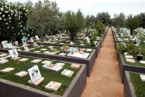 Αυτή η γυναίκα έθαψε τον νεκρό γάτο της - Αυτό που αντίκρισε στον τάφο του 5 ημέρες μετά θα σας σοκάρει!