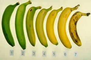 Ποια απ' αυτές τις μπανάνες είναι η πιο υγιεινή επιλογή - Η απάντηση θα σε αφήσει άφωνο