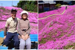 Φύτευε για 2 χρόνια λουλούδια για τη γυναίκα του - Ο λόγος θα σας κάνει να δακρύσετε