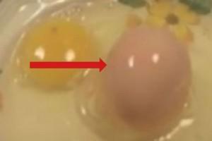 Χαμός στο facebook με το αυγό που βλέπετε - Δείτε τι συνέβη όταν έσπασε (Video)