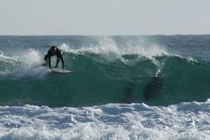 Τραγικός θάνατος σέρφερ από επίθεση καρχαρία