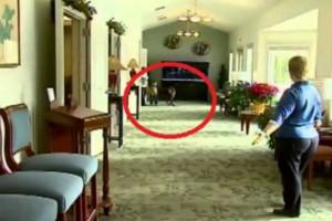 Έβαλαν ένα σκύλο μέσα στο γραφείο κηδειών και άρχισαν να βιντεοσκοπούν - Ο λόγος; Μας έκανε να δακρύσουμε... (Video)