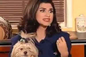«Μεν και Δεν»: Δεν θα πιστέψετε πόσα χρήματα έπαιρνε η σκυλίτσα