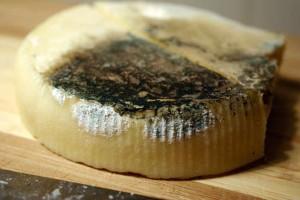 Το μυστικό κόλπο για να μη μουχλιάζει το τυρί σας - Μην το ξαναπετάξετε