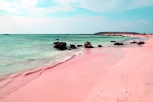 Το μικρό νησάκι με τα τιρκουάζ νερά και τις ροζ παραλίες - Αξίζει να το επισκεφθείτε