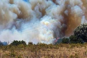 Εύβοια: Σε ύφεση η φωτιά - Εντείνει τις μάχες της η Πυροσβεστική