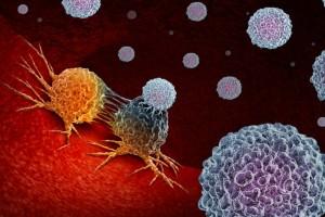 10 τροφές που δεν τρέφουν τα καρκινικά κύτταρα - Προσοχή