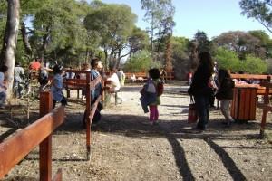 Συναγερμός σε κατασκήνωση: Κοριτσάκι βρέθηκε θετικό στον κορωνοϊό