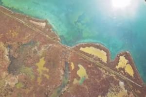 Λίμνη Μούστου: Ένας παράδεισος στην Αρκαδία (video)