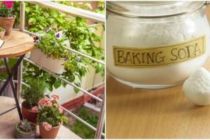 Το μυστικό με τη μαγειρική σόδα που θα κάνει τη βεράντα σας να αστράφτει