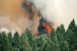 Φωτιά στην Κύπρο: Εκκενώνεται χωριό