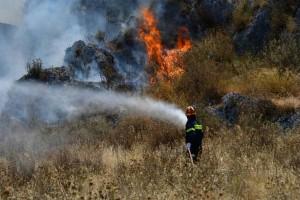 Συναγερμός στην Κύπρο: Πυρκαγιά 20 χιλιομέτρων στην Πάφο και τη Λεμεσό