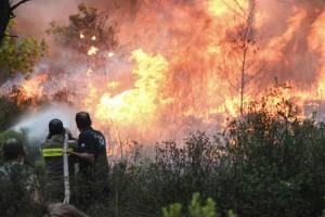 Μεγάλη φωτιά στη Μάνη - «Απειλούνται» σπίτια