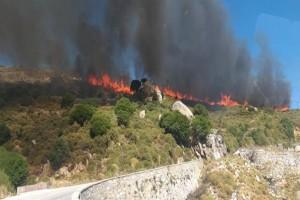 Φωτιά στη Νάξο: Εκκενώθηκε οικισμός - Ενισχύθηκαν οι δυνάμεις πυρόσβεσης (Video)