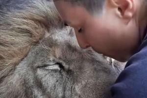 39χρονη γυναίκα παίρνει αγκαλιά ένα λιοντάρι - Τότε αυτό...