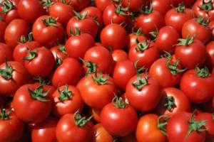 Αυτό είναι το μυστικό για να διαλέγετε πάντα τις καλύτερες ντομάτες